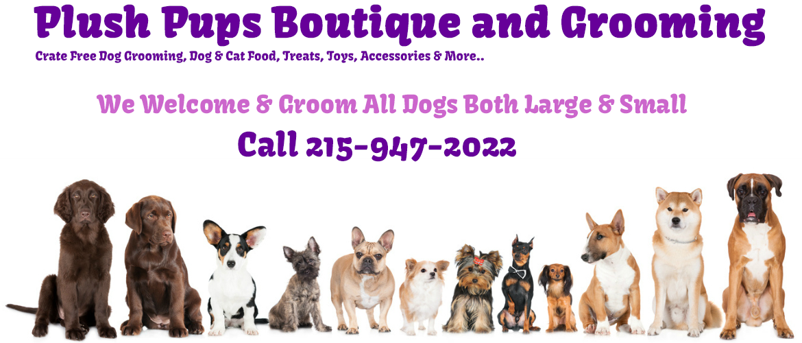 Plush Pups Boutique & Grooming
